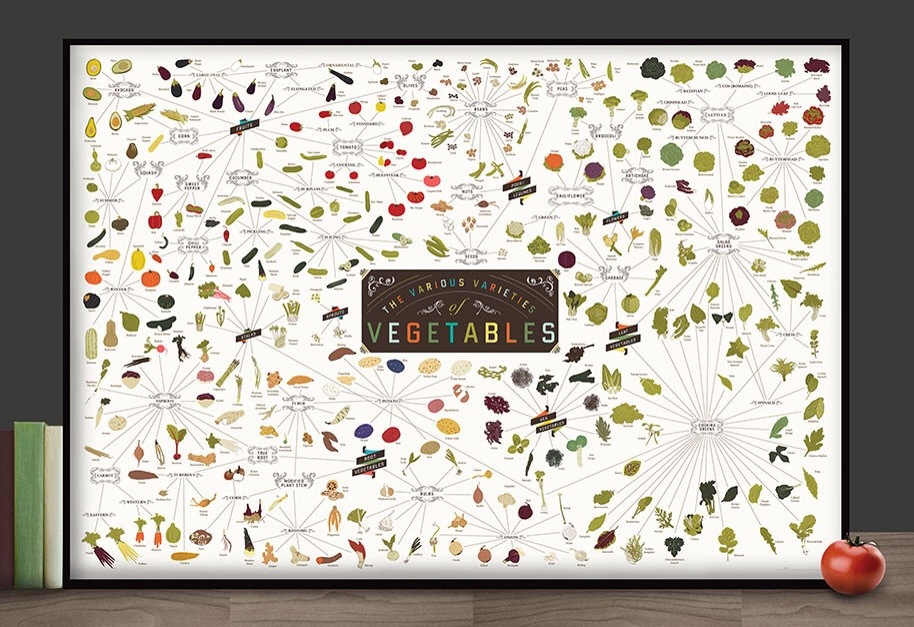 culinaire infographics